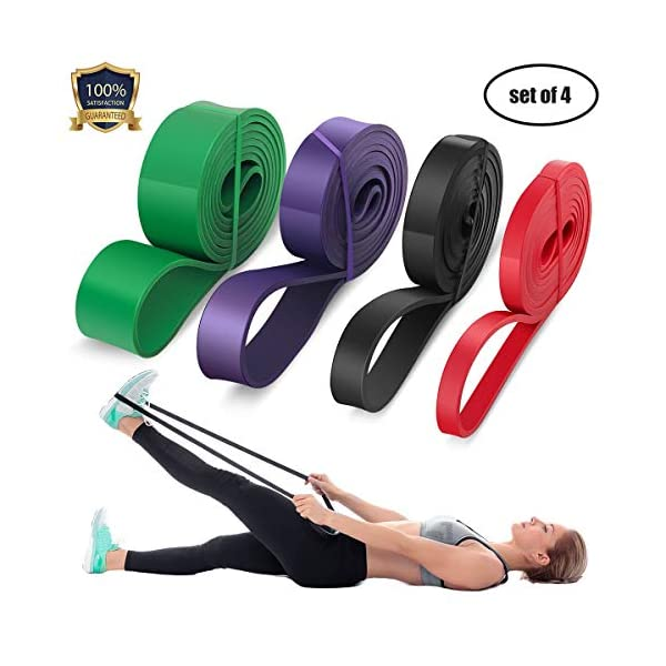 LEEKEY Resistance Band Set, Pull Up Assist Bands – Stretch Resistance Band – Mobility Band Powerlifting Bands For Resistance Training, Physical Therapy, Home Workouts (Set-4)