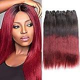 Huarisi Cheveux Brésilien virginal raide extensions Burgundy cheveux ombré humain court tissages 3 paquets noir naturel à couleur de vin rouge 10 12 14 pouces 100g/pièce pour la tête complète