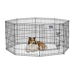 portable dog fence for camping
