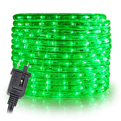 WYZworks 100' feet Green LED Rope Lights - Flexible 2 Wire Accent Holiday Christmas Party Decoration Lighting | UL Certified