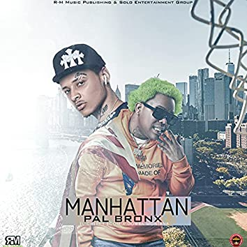 De Manhattan Pa El Bronx