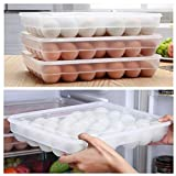Bloomma Huevera De Plástico para La Nevera - Envase para Huevos Grande con Capacidad para 34 Huevos - El Complemento De Cocina Imprescindible - Grande - Transparente