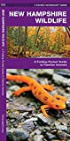 New Hampshire Wildlife: A Folding Pocket Guide to Familiar Animals (Wildlife and Nature Identification)