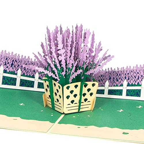 Ribbli Lavender Handmade 3D Pop Up Card,Greeting Card,Mother's Day Card,Thank You card,Birthday Card,Flower Card,For Women,Mom,Daughter,Wife,Get Well,Congratulations,Anniversary,All Occasion