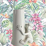 nn F.LLI MAJELLO Vaso Monkey H.20.5x15CM Lemure in CAPODIMONTE Made in Italy Vase