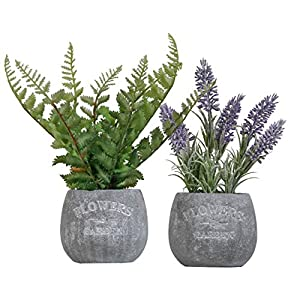 Silk Flower Arrangements Valery Madelyn Artificial Lavender Plants and Greenery Fern Leaves in Pots,Rustic Home Decor Flower Arrangements for Kitchen,Office and Table Centerpieces Decorations