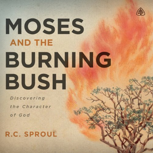 Moses and the Burning Bush audiobook cover art