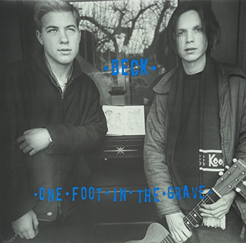 One Foot in the Grave (Aniv) [Vinyl]