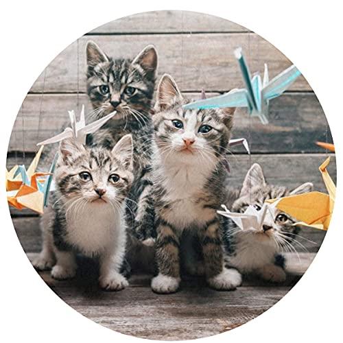 NA Alfombra Circular para baño, Alfombra Redonda para baño, Alfombra Antideslizante para Ducha, Franela, Almohadilla Absorbente Extra Suave, Alfombrilla para Perros con grullas de Origami para Gatos