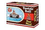 Playtek Toys Tootsie Roll Noodle Inflatable Pool Float