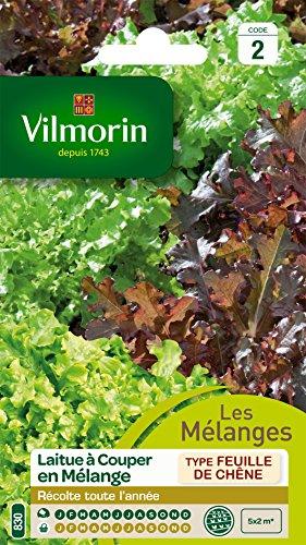 Vilmorin 3609242 Pack de Graines Laitue à Couper en Mélange Bol Vert/Rouge