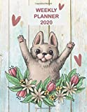 Weekly Planner 2020: Cute Cat Weekly & Monthly Organizer 2020 | Calendar Schedule Views With Notes & Expense Tracker Pages | Perfect Gift Idea for Cat Lovers, Mom, Dad, Friends and Co-Worker
