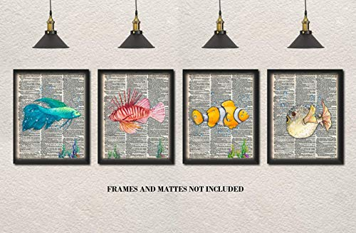 Beta, Blowfish, Lion Fish, Clown Fish Upcycled Dictionary Art - Set of 4 8 x 10 Unframed Prints - Unique Gift for Ocean and Aquarium Lovers - Beach House, Lake House Wall Decor