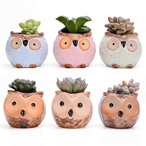 AYUSHOP Succulent Plant Pot, 6 Pack 2.8 Inch Mini Kleine Keramiek Uil Bloem Bonsai Plant Pots voor Cactus Kruiden Huisopwarming Cadeauhouder Set voor Home Office Bureau Plank