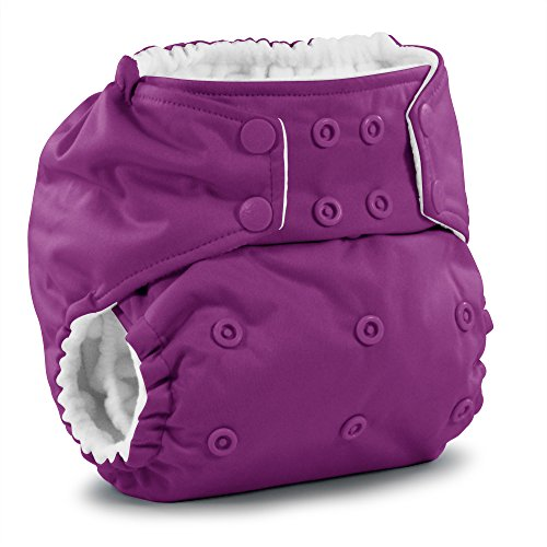 Rumparooz Cloth Pocket Diapers
