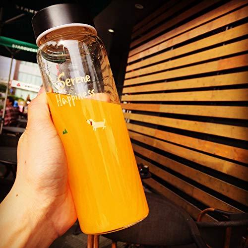 Haidun 500Ml Abstract Karakter Stijl Nieuwe Water Fles Sport Lek Bewijs Glas Ketel Mode Reizen Drink Fles Outdoor Beste Cadeau, 450ML