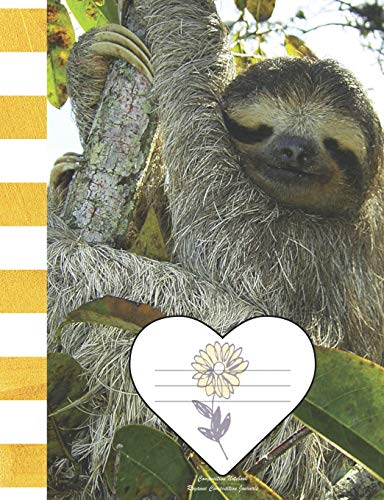 Composition Notebook: Brown Throated Three Toed Sloth Picture Cover - Wide Ruled Journal Diary School Note Taking Book for Elementary Middle High School Classes