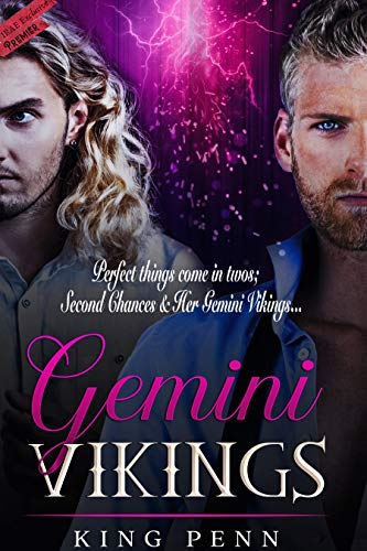 Gemini Vikings (Gemini Vikings Duet Book 1) by [King Penn]