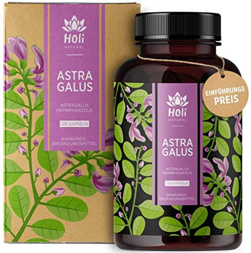 Holi Natural® Astragalus Extrakt 10:1 | 30% Polysaccharide | 120 vegane Kapseln | 2000mg je Tagesdosis | 10% Saponine | ECHTER Tragant Hochdosiert & Laborgeprüft