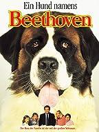 ein hund namens beethoven, Ende der Ähnliche Suchbegriffe-Liste