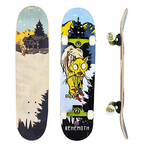 IMITOR Complete Skateboards for...