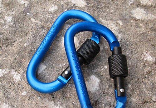 Liroyal Porte-clés mousqueton bleu en forme de D pour camping, escalade, randonnée