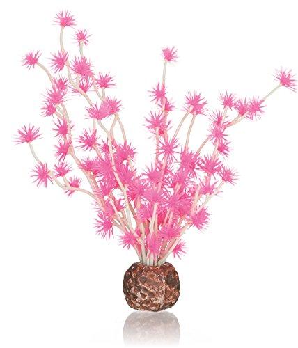OASE 55067 Bonsai Ball, rosa