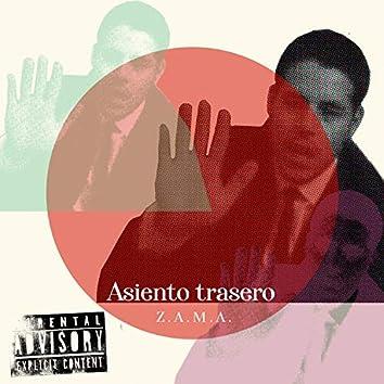 Asiento Trasero