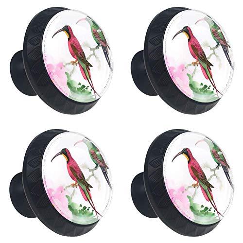 TIZORAX Aquarel Schilderen van Vogels Lade Knoppen Trek Handgrepen 30MM 4 Stks Glazen Kast Lade Trekken voor Keuken Kasten Dressoir Kast