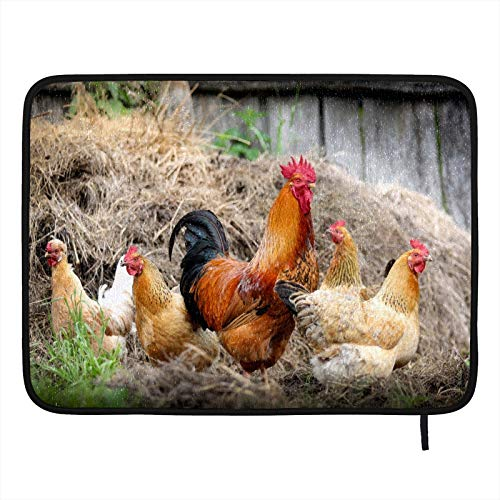 Reusable Dish Drying Mat For Kitchen Counter Rooster Farm Chicken Absorbent Dish Drying Drainer Mat For Countertop Heat-resistant ECO Friendly Double-sided Design