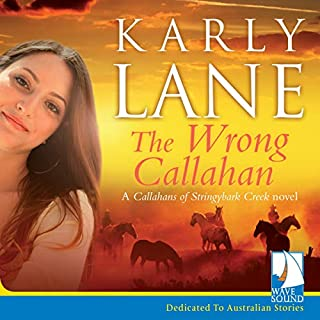 The Wrong Callahan audiobook cover art