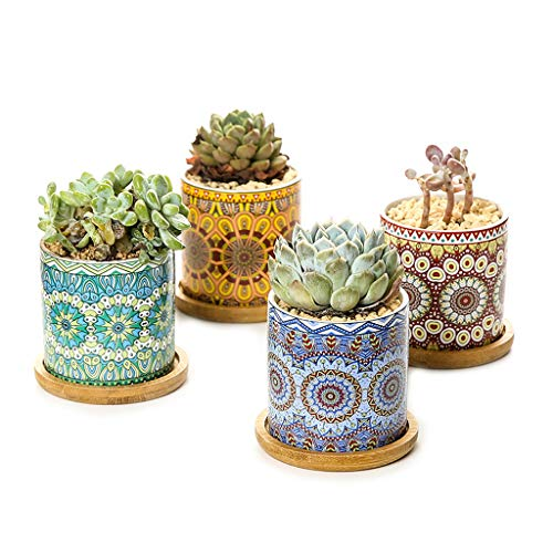 KJ-KUIJHFF Lot de 4 mini pots de fleurs en céramique style bohème pour petites plantes, motif mandalas