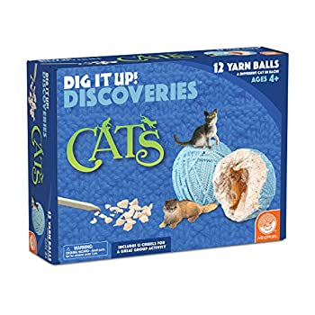 MindWare Dig It Up Discoveries  Cats – Party-Sized 12-Pack of Educational Discovery Digs for Kids with Tools & Fun Facts – Learn All About Cats!