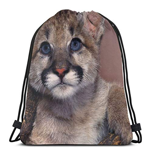 Affordable shop Cougar Puma Golubye Glaza - Mochila ligera con cordón para gimnasio, viajes, yoga, bolsa de hombro para senderismo, natación, playa