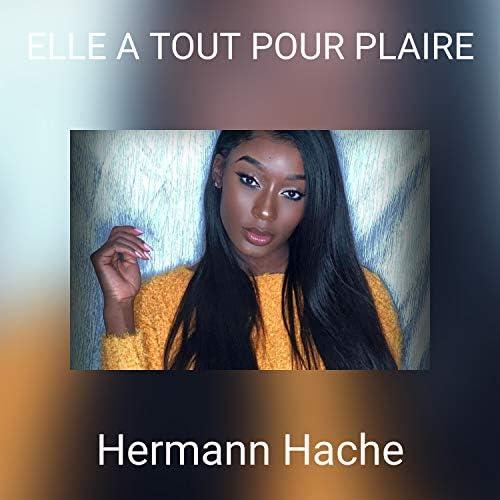Hermann Hache