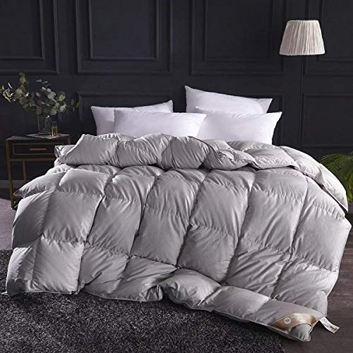 CHOU DAN Queen Duvets,Warm Spring And Autumn Duvet Thickened 95 Quilt Winter Quilt Core Student Single Double White Goose Down Dormitory-220x240cm 3400g_export Gray-Duvet
