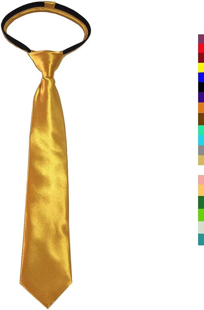 CANGRON Necktie for Boy Toddler Tie Pre-Tied Satin Boys Tie with Giftbox