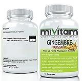 GINGEMBRE PUISSANT 12000mg: Booste L'énergie, L'immunité, Antioxidant Performant,...