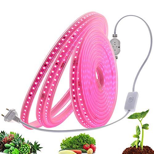 LIZONGFQ Anlage wachsen Lichter 2835 Chip Wasserdicht Full Spectrum LED-Streifen für Pflanzen Blumen 220V 120LEDs / M Phytolamp für Grow Aquarium,A,2M