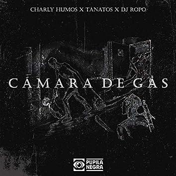 Camara De Gas (feat. Dj Ropo)