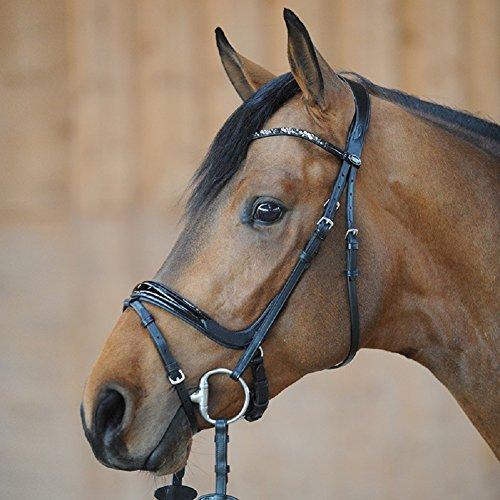 Kavalkade Lack-Trense Ivana, ENGL.-Komb, schwarz, Pony groß
