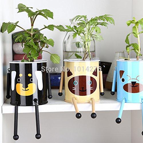 Plato de hojalata para bonsáis con diseño de flores y semillas para decoración de interiores, de 2015