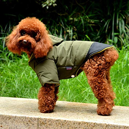 Parka impermeable de invierno para perros POPETPOP