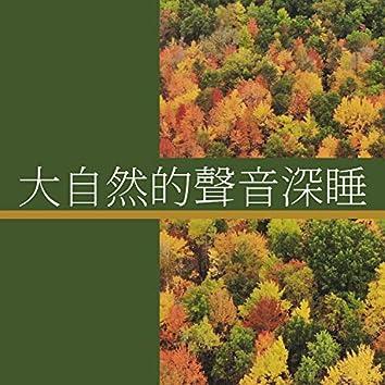 大自然的聲音深睡 - 河流的聲音, 森林裡的鳥聲, 新時代自然音樂