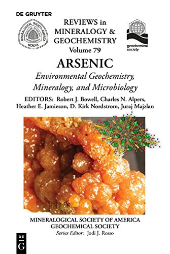Arsenic: Environmental Geochemistry, Mineralogy, and Microbiology (Reviews in Mineralogy & Geochemistry Book 79) (English Edition)