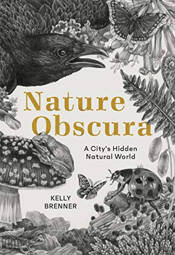 Compare Textbook Prices for Nature Obscura: A City's Hidden Natural World Illustrated Edition ISBN 9781680512076 by Brenner, Kelly