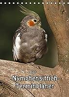 Der Nymphensittich-Terminplaner (Tischkalender 2022 DIN A5 hoch): Kleine verspielte Papageien (Geburtstagskalender, 14 Seiten )