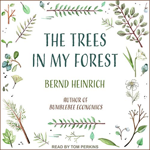 The Trees in My Forest audiobook cover art