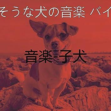 音楽-子犬
