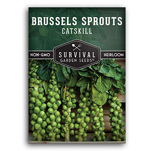 Survival Garden Seeds - Catskill Brussels Sprouts Seed for Planting - Packet...